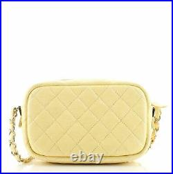 Chanel Camera Case Bag Quilted Iridescent Caviar Mini