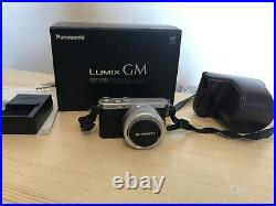 Panasonic Lumix DMC-GM1 Compact System Camera with 12-32mm lens+Leather Case